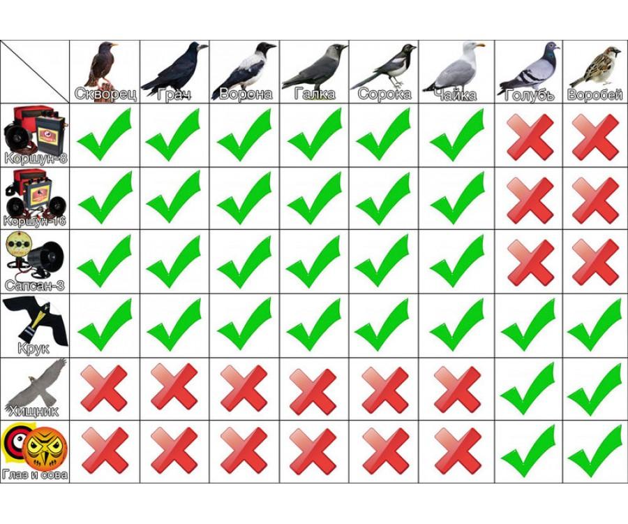 Акустический отпугиватель птиц КОРШУН-8