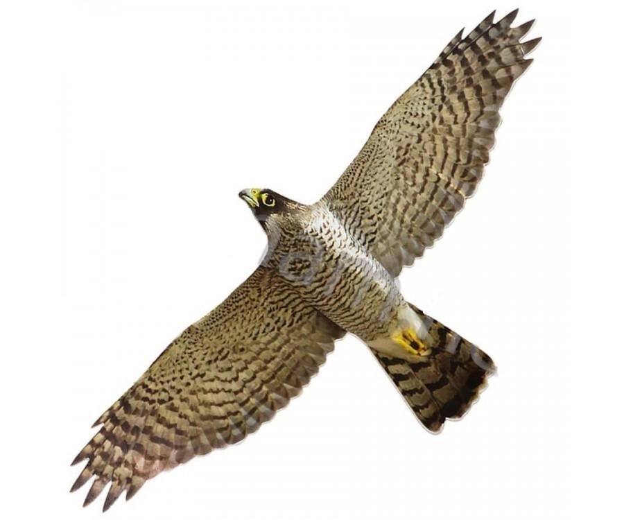Визуально-динамический отпугиватель птиц - Хищник-1
