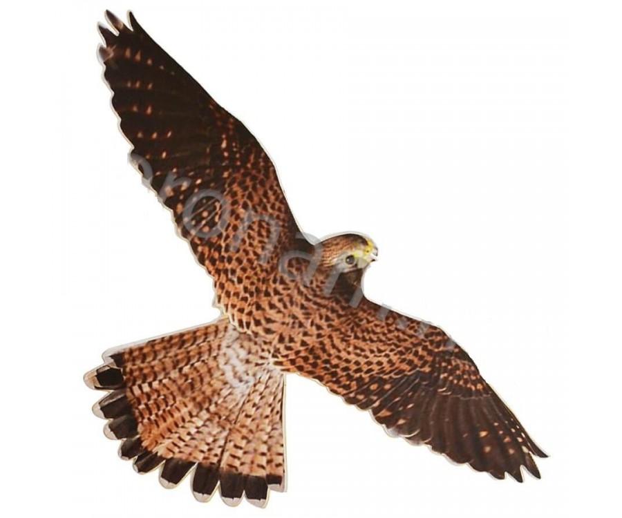 Визуально-динамический отпугиватель птиц - Хищник-3