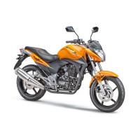 Мотоцикл Stels 250 Flex