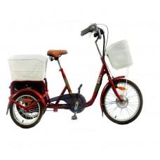 Электрический велосипед JT-001 Vital Rays