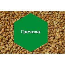 Удобрение «Гречиха» 10л