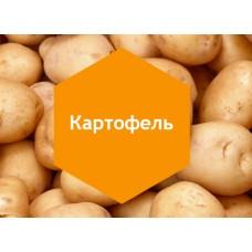 Удобрение «Картофель» 1л