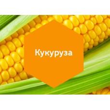 Удобрение «Кукуруза» 10л