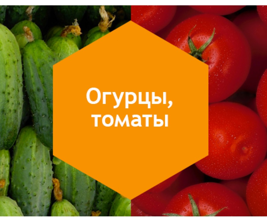 Огурцы, томаты выращенные в грунте 1л