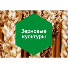 Удобрение «Зерновые культуры» 10л