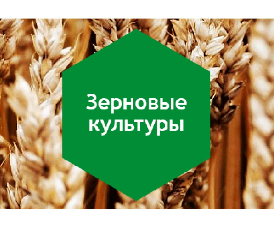 Зерновые культуры 10л